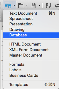 Database item in the New menu of the Standard Toolbar